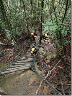 Santubong_Mountain_Kuching_Sarawak_21