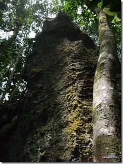 Limestone_hill_climb_091121_3
