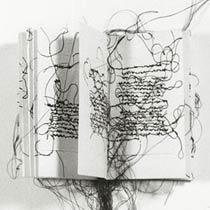 libro artista