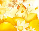 amarilloboceto1.jpg