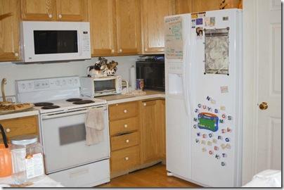 2009_1015_newrefrig&microwave-1