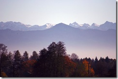 autumn-forest-in-the-Alps