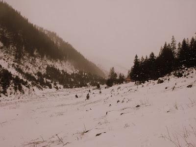 Fagaras. Valea Sambetei