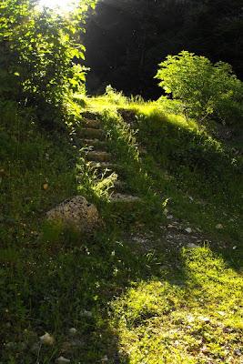 Piatra Craiului. Troita din Prapastiile Zarnestilor. Trepte in lumina