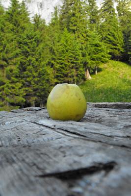 Piatra Craiului - Refugiul Spirlea - la masa de lemn servind cina