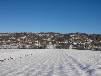 Tehomir. Iarna in sat. Dealul