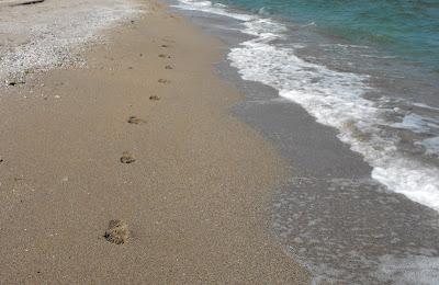 Marea. Pasi in nisip