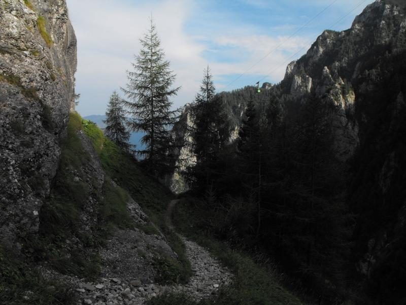 Bucegi -  Valea Jepilor sau Jepii Mici
