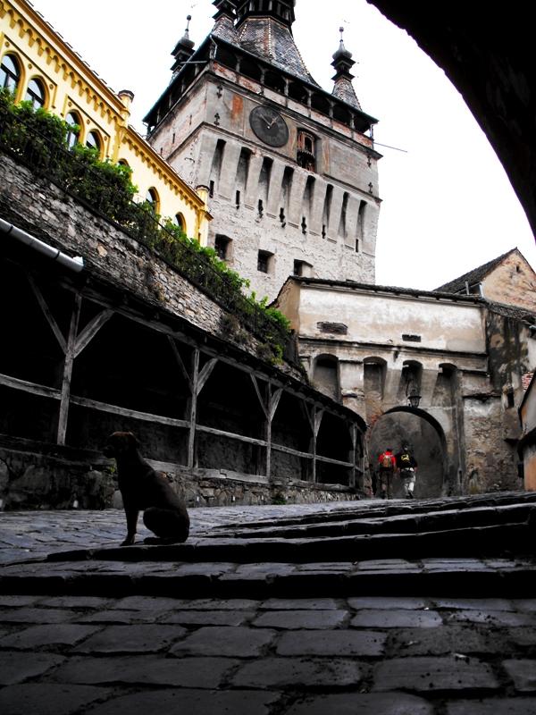 Sighișoara. Intrarea în Cetate. Vedere spre Turnul cu Ceas