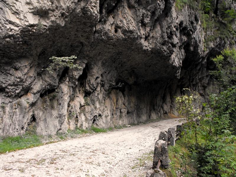 Cheile Olteţului - drumul de acces săpat în stâncă