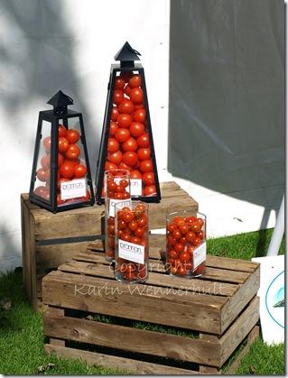 tomatinstallation vtnm