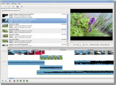 Image-Capture-PiTiVi_v0.13.0.1