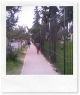 Rejas Casa de Gobierno - 15_03_11 (4)