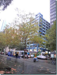 Collins St Autumn