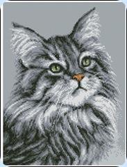 Серый-Кот