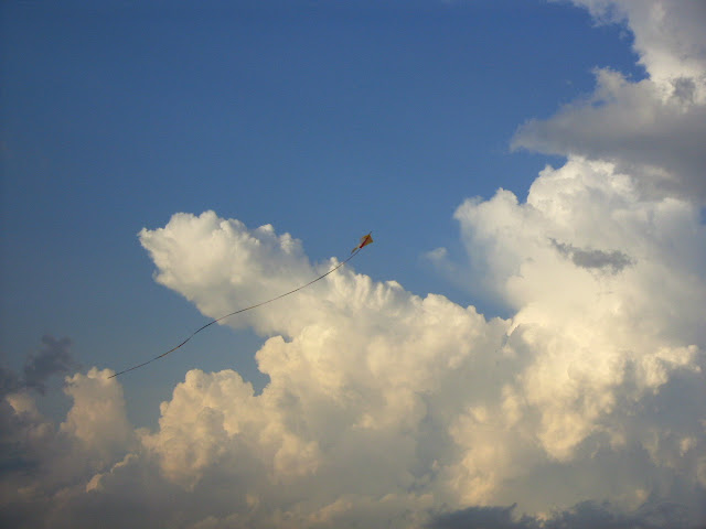 Kites flying in Singapore