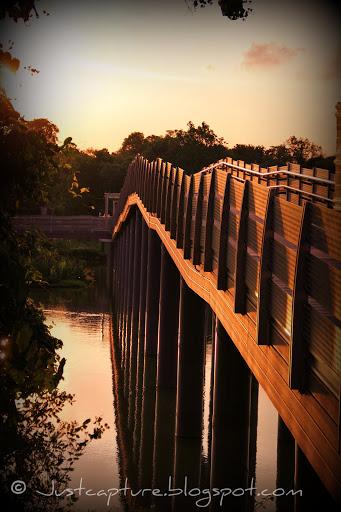 Sunday Bridges