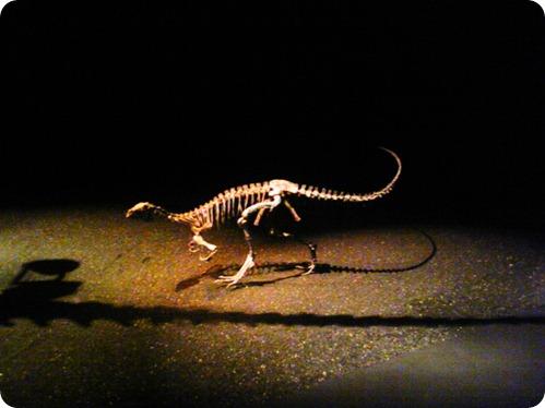 dinosaurs 010