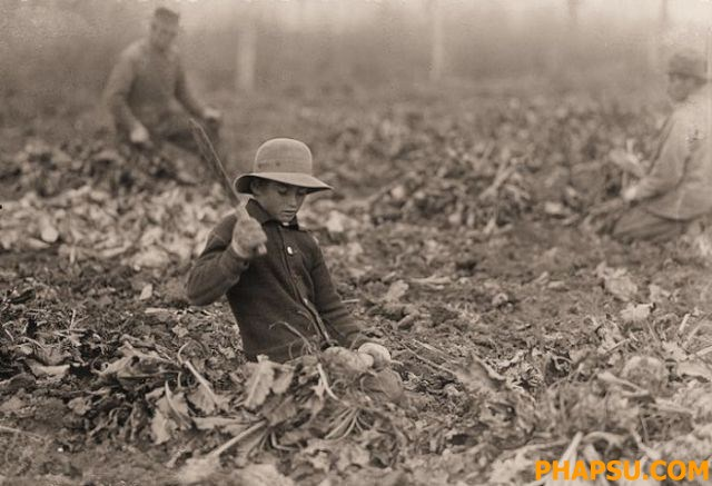 child_labor_in_640_41.jpg