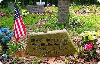 grave-7