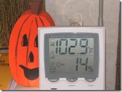 pumpkin-102
