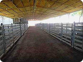 22-show-barn