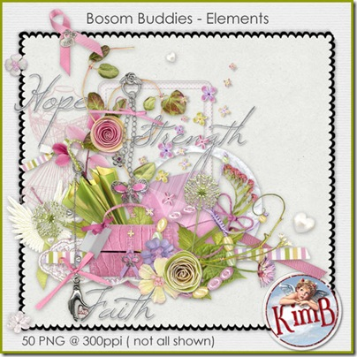 kb-BBuddies-elements