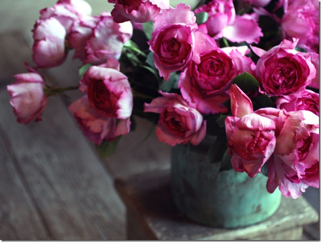 flowers saipua3