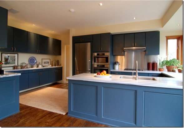 2. my kitchen blue[1]