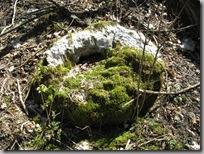 Not a rock