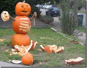 Pumpkin territorial