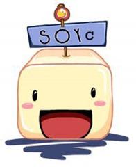 soyc11