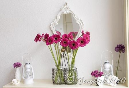 Pink Gerbera Vignette6