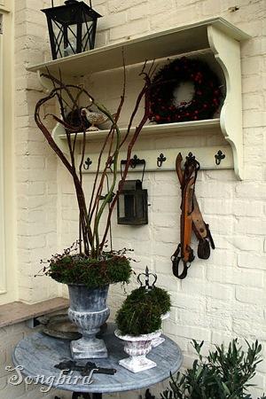 Winter garden1