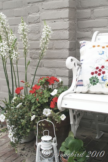 Red and White Outdoor vignette