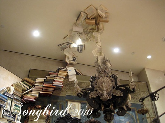 Shopping in New York, inspiration all about - Songbird