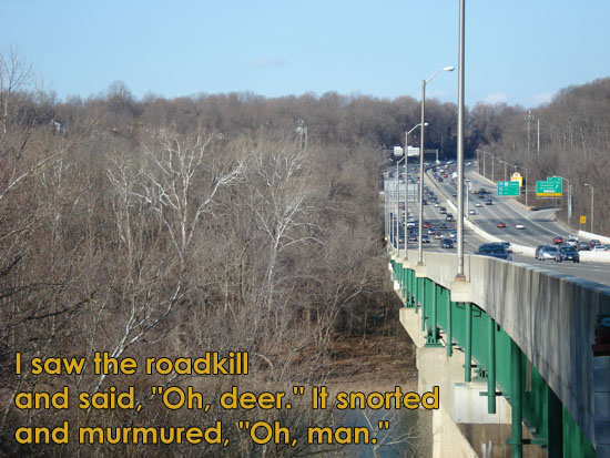 I was glad he didn't say, OH BOY! [haiku: I saw the roadkill / and said, OH, DEER. It snorted / and murmured, OH, MAN.]