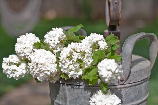 flowersgalvanizedbucket