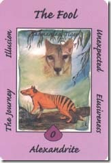 Australian Animal Tarot
