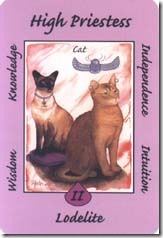 Australian Animal Tarot (2)