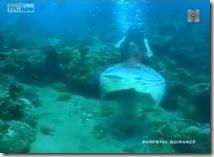 Mermaids - Marina Fantaseries 04