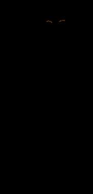 v0056