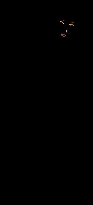 v0079