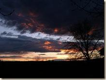Tualco sunset