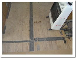 Floor and dogs 002