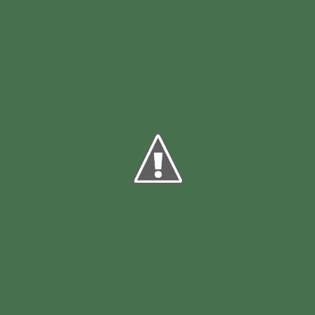 Kenia 2008