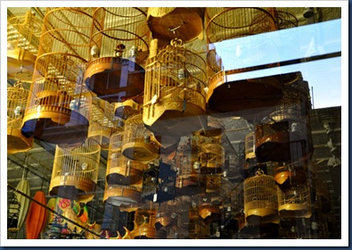 2010_07_cages