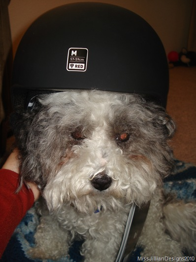 unhappy helmet model