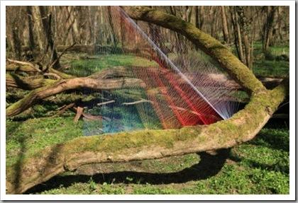 rainbow-forest-3-412x274