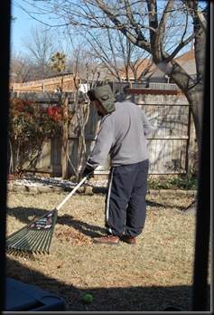 rake a yard